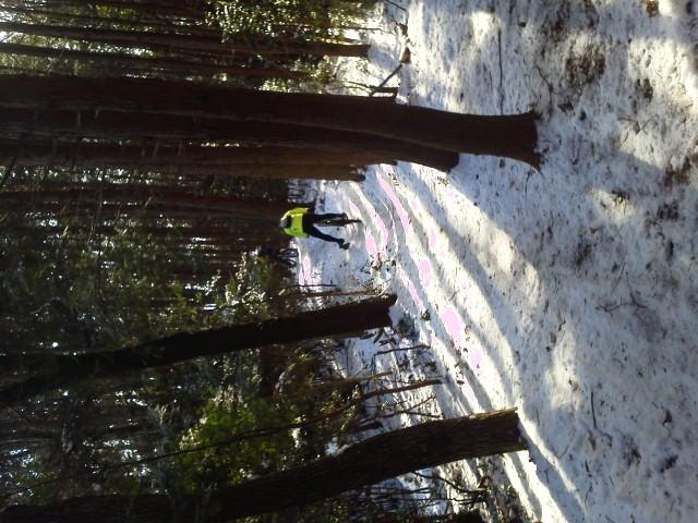 雪が降った週末は